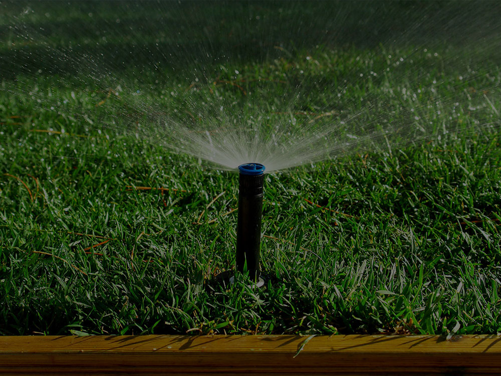 Bremerton Irrigation