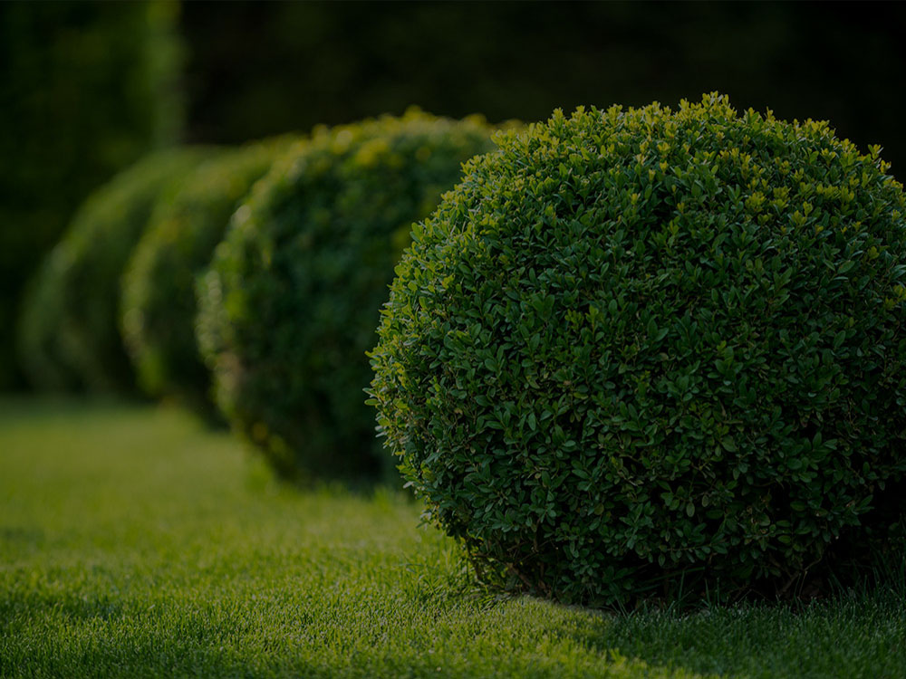 Poulsbo Landscaping