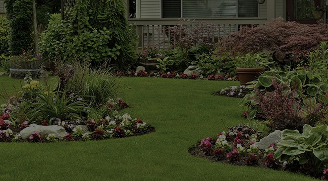 Silverdale Landscape Design